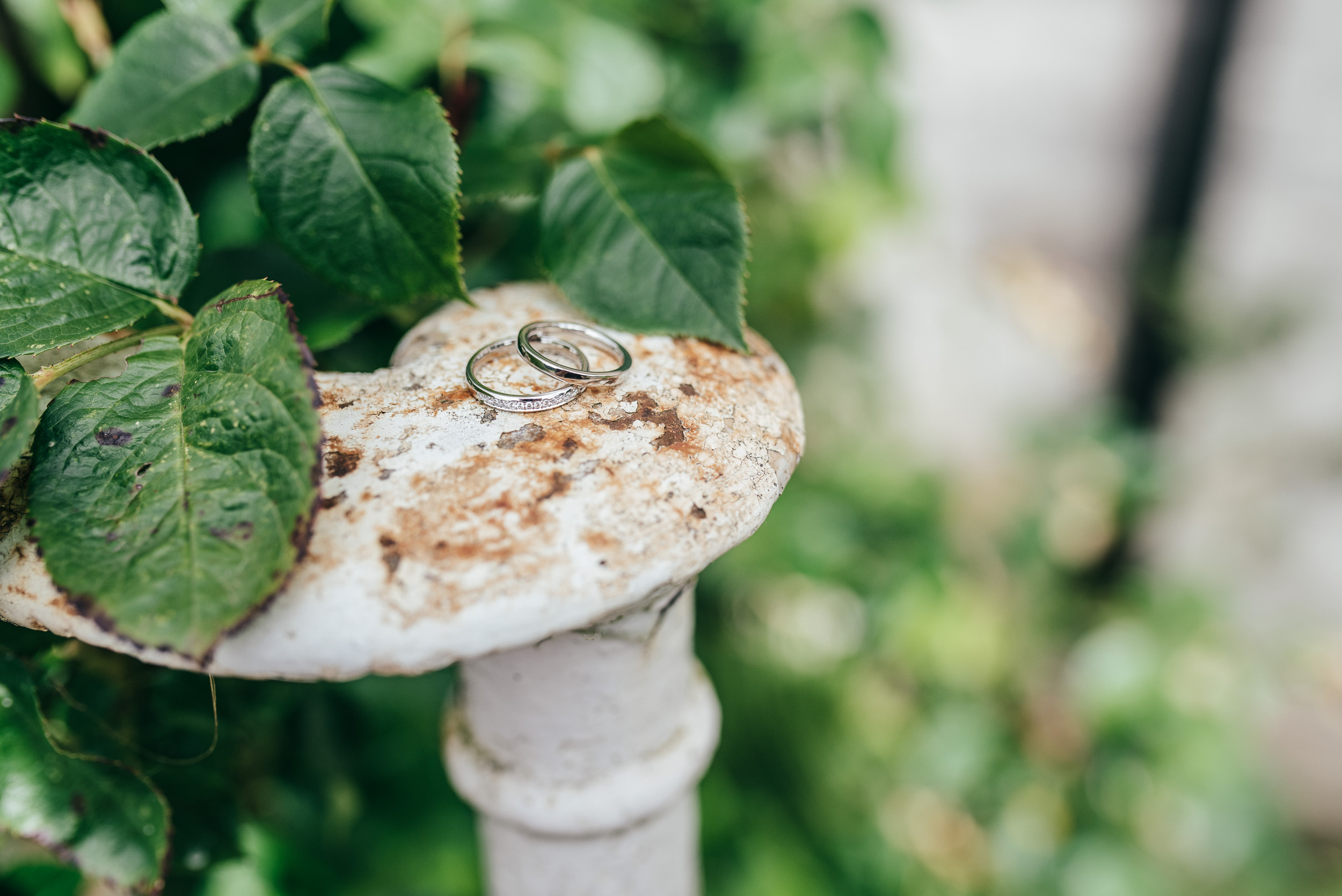 Wedding rings Byre at Inchyra