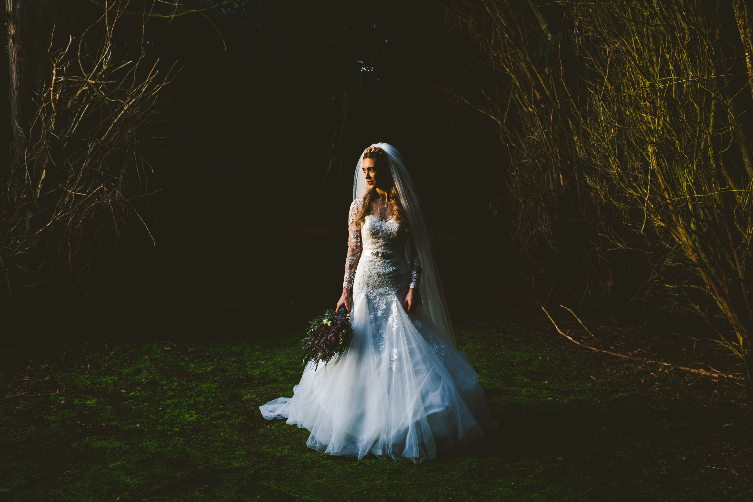 Beautiful bride in the woods