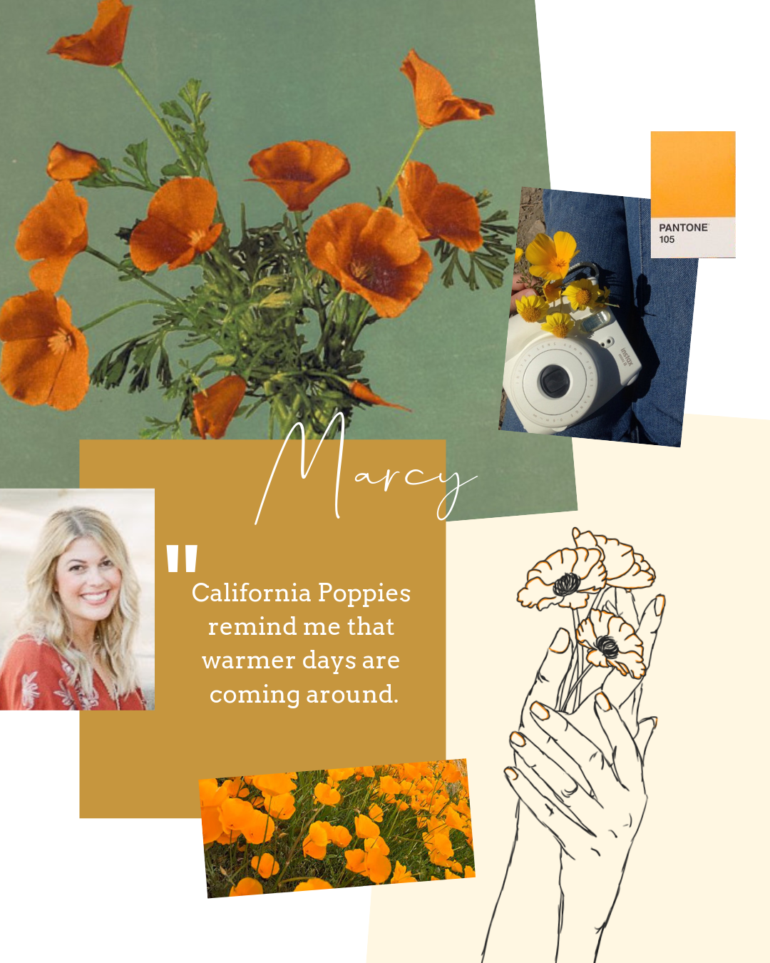 Marcy  is thrilled about the California poppies blooming, because she's  so  over the cold weather. She's loving the new  Target Smartly Citrus Grove  cleaner for her humble abode, which we find is becoming a quick favorite for Targét lovers alike.