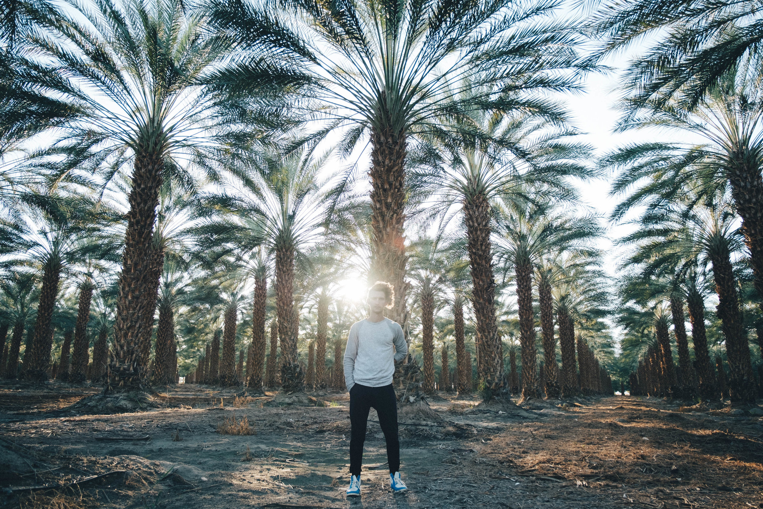 Buggy Palm Tree Farm-43-2.jpg