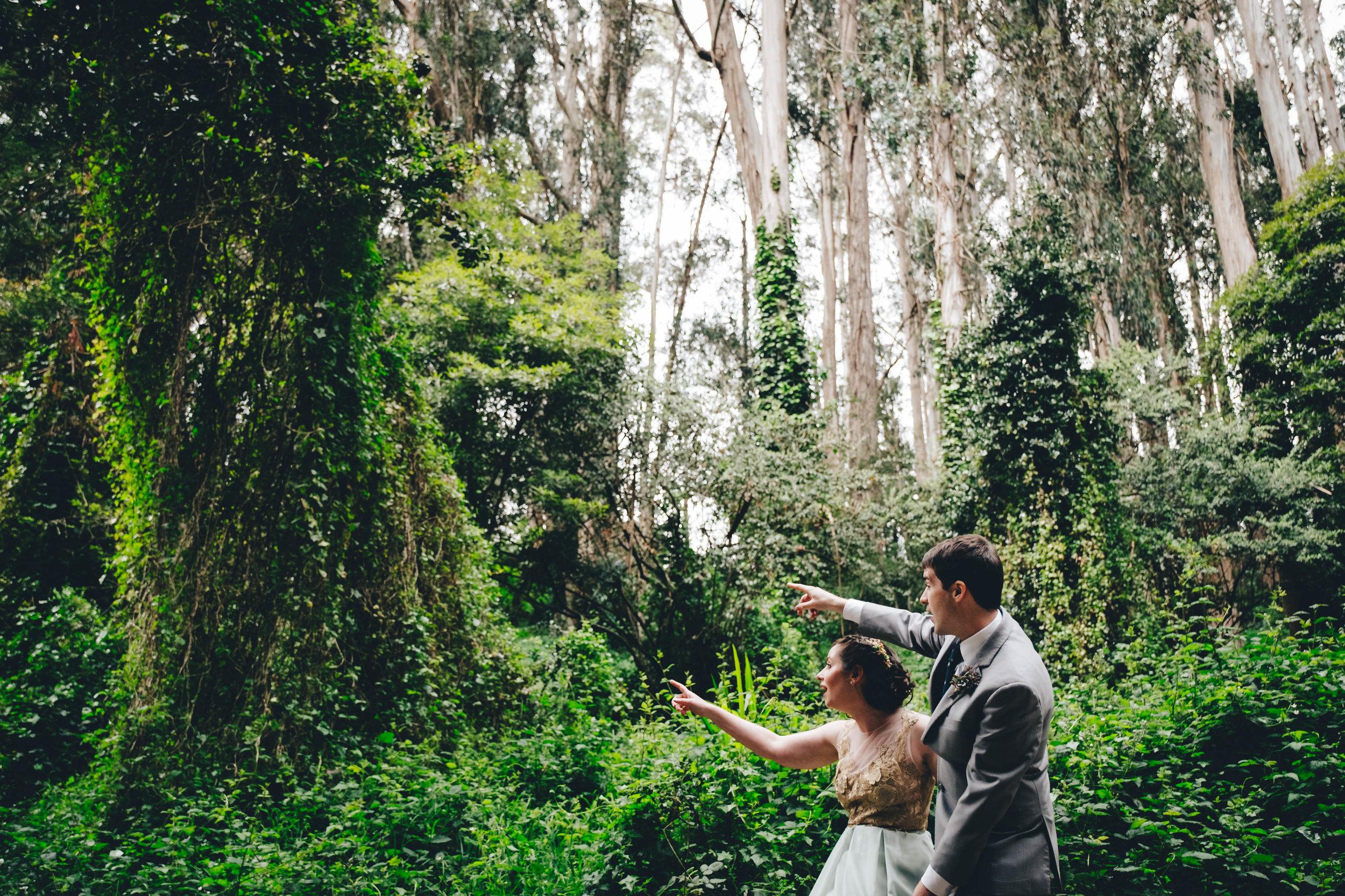 Emily  Ned Wedding (165 of 625).jpg
