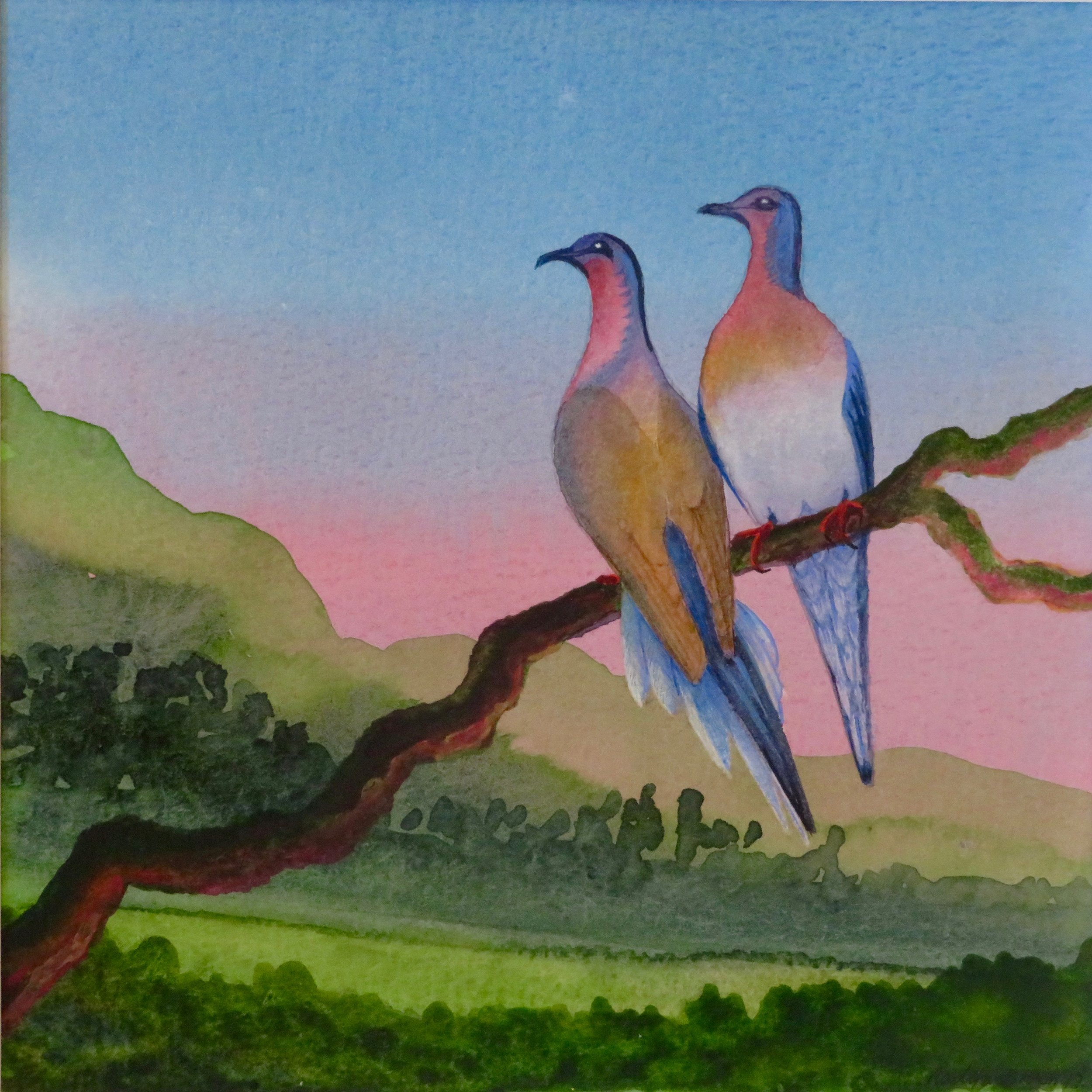 Passenger Pigeons, Extinct