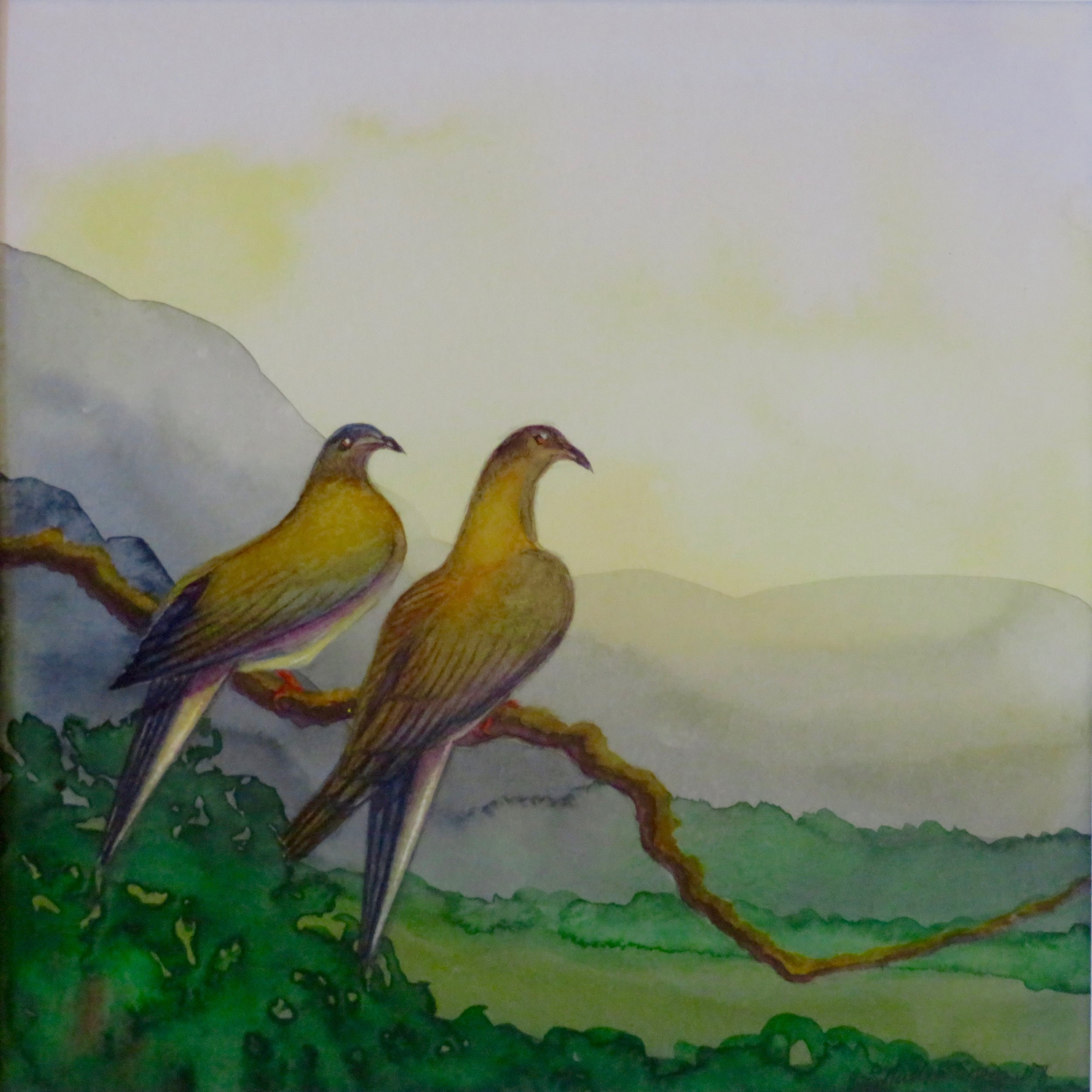 The Passenger Pigeons, Extinct