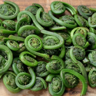 Of Fiddleheads and Taxes - Mpls. St. Paul Magazine — April 18, 2017