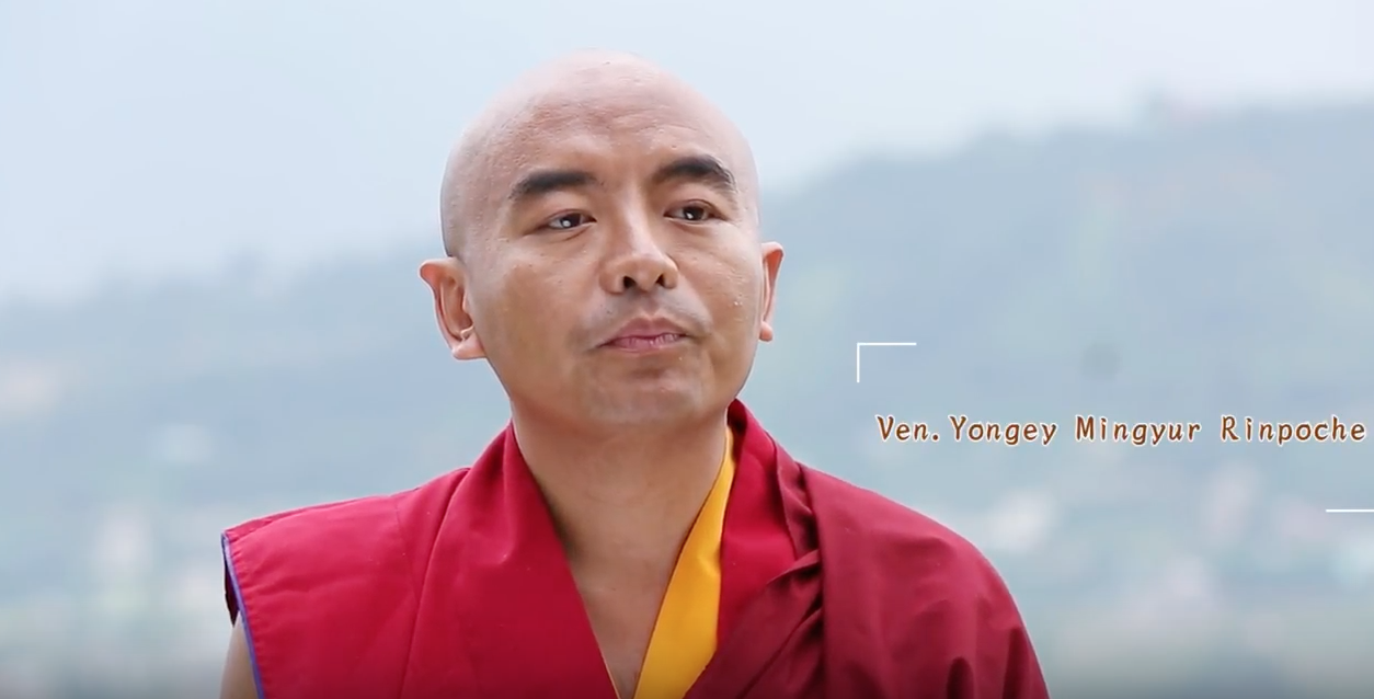 Watch Rinpoche talking about his vision for training his monks in Nepal