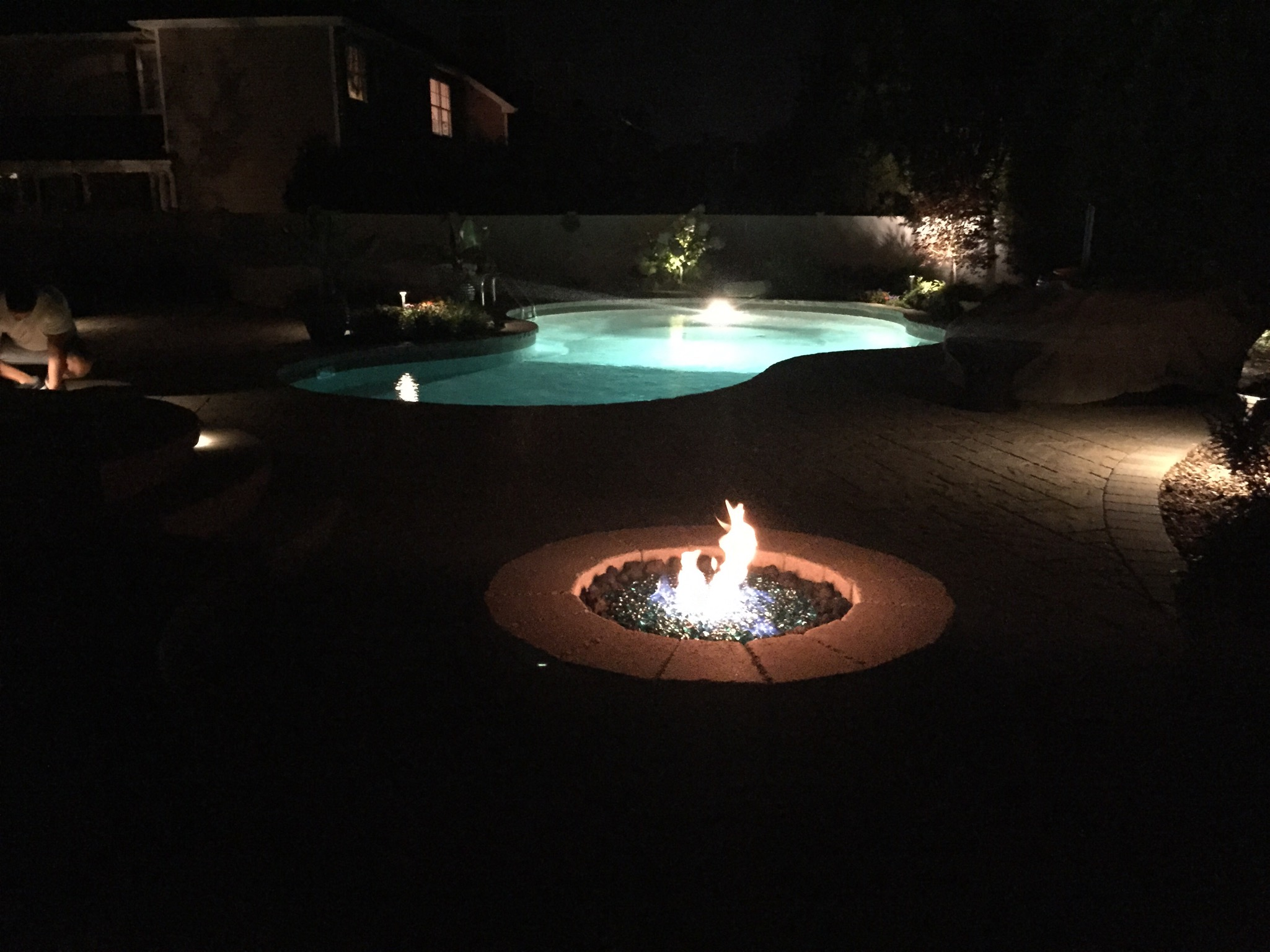 Smithtown, NY swimming pool landscape lighting