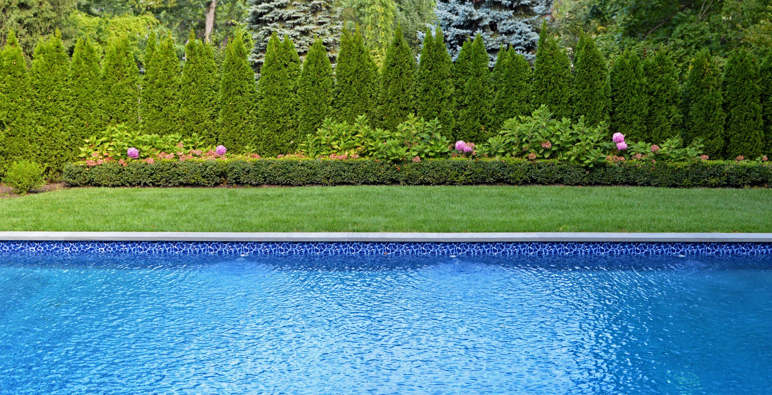 Landscape design with swimming pool in Northport, NY