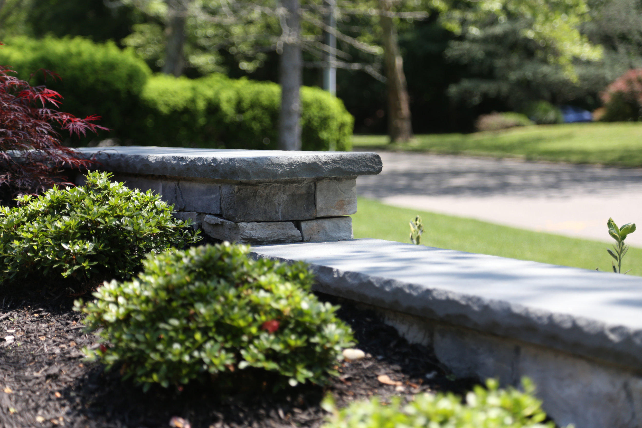 4 Best Allergy-Friendly Landscape Design Ideas for Your East Northport, NY, Home