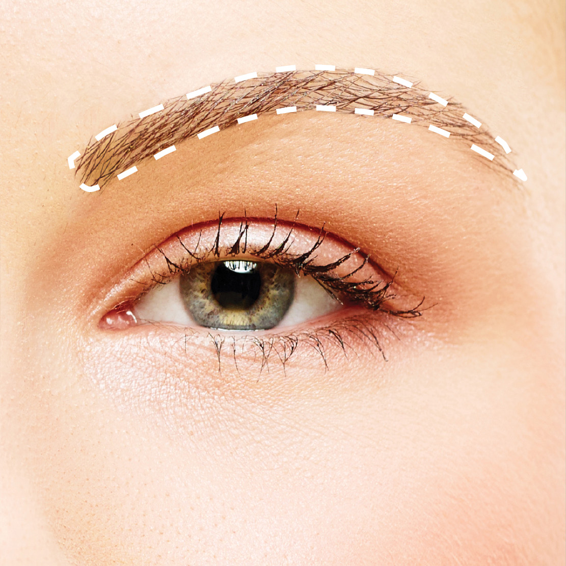 The Refined Brow: A narrow, defined brow with rounded angles and a high, soft arch.
