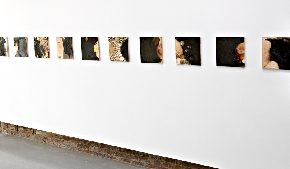 Balci.Selin. Contamination (overview II) I-X. Microbial growth on board.12x12 in.2011.JPG