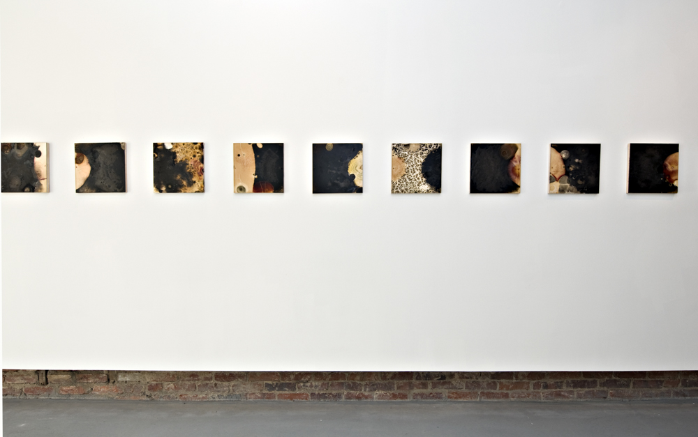 Balci.Selin. Contamination (Overview I) I-X. Microbial growth on board.12x12 in.2011.JPG