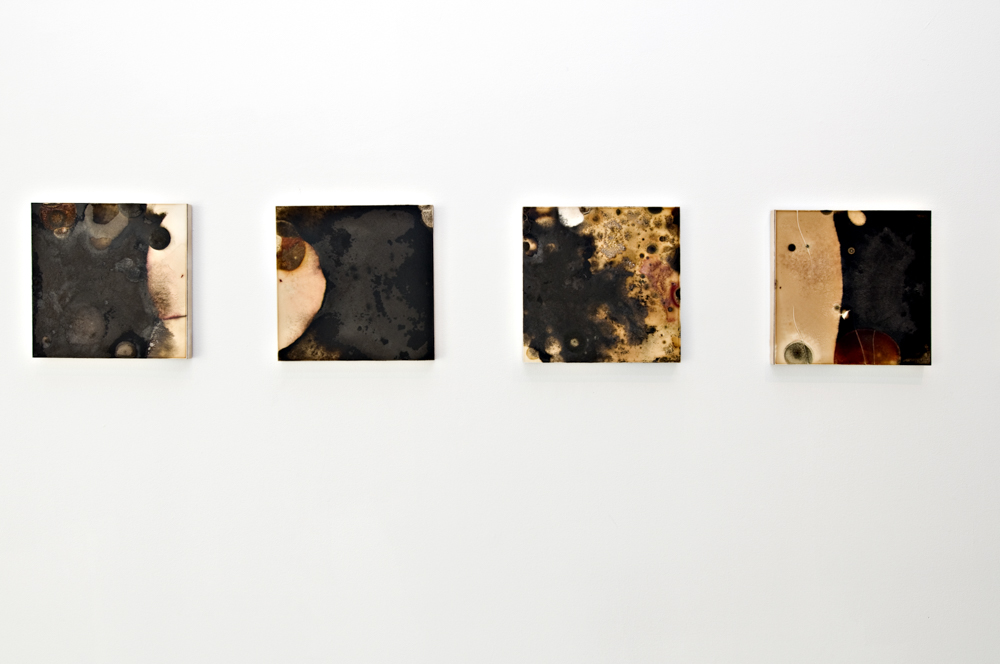 Balci.Selin. Contamination (Overview IV) I-X. Microbial growth on board.12x12 in.2011.JPG