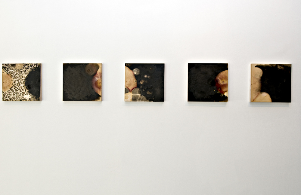 Balci.Selin. Contamination (Overview V) I-X. Microbial growth on board.12x12 in.2011.JPG