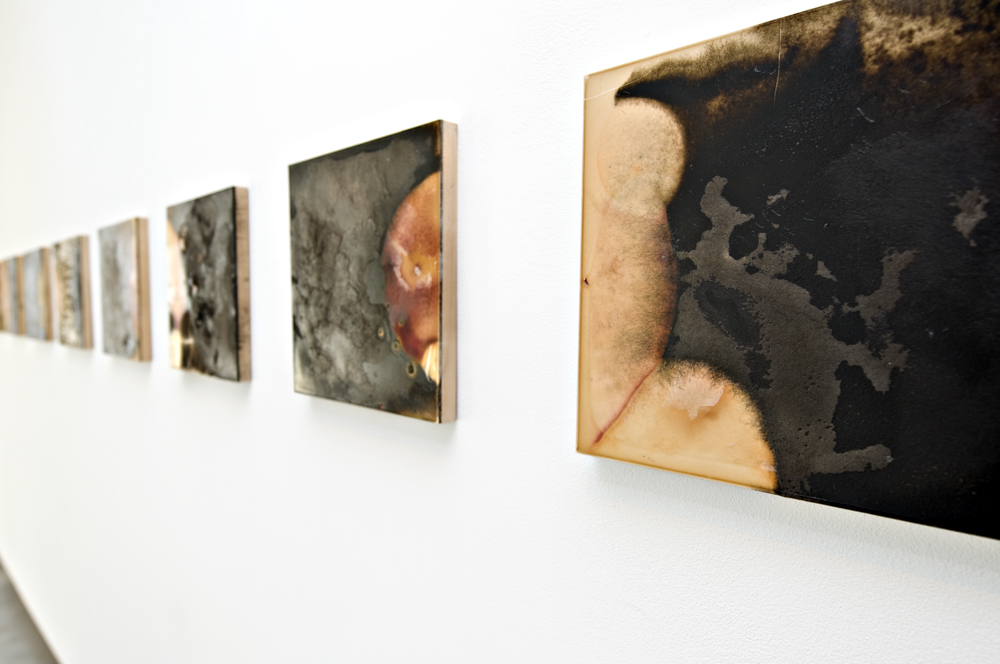 Balci.Selin. Contamination (Overview VI) I-X. Microbial growth on board.12x12 in.2011.JPG