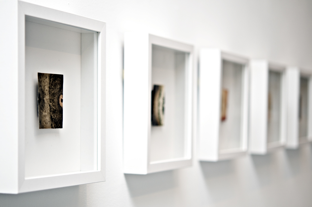Balci.Selin. Interface (Overview I). Microbial growth on paper.10x10in for four.2011.JPG