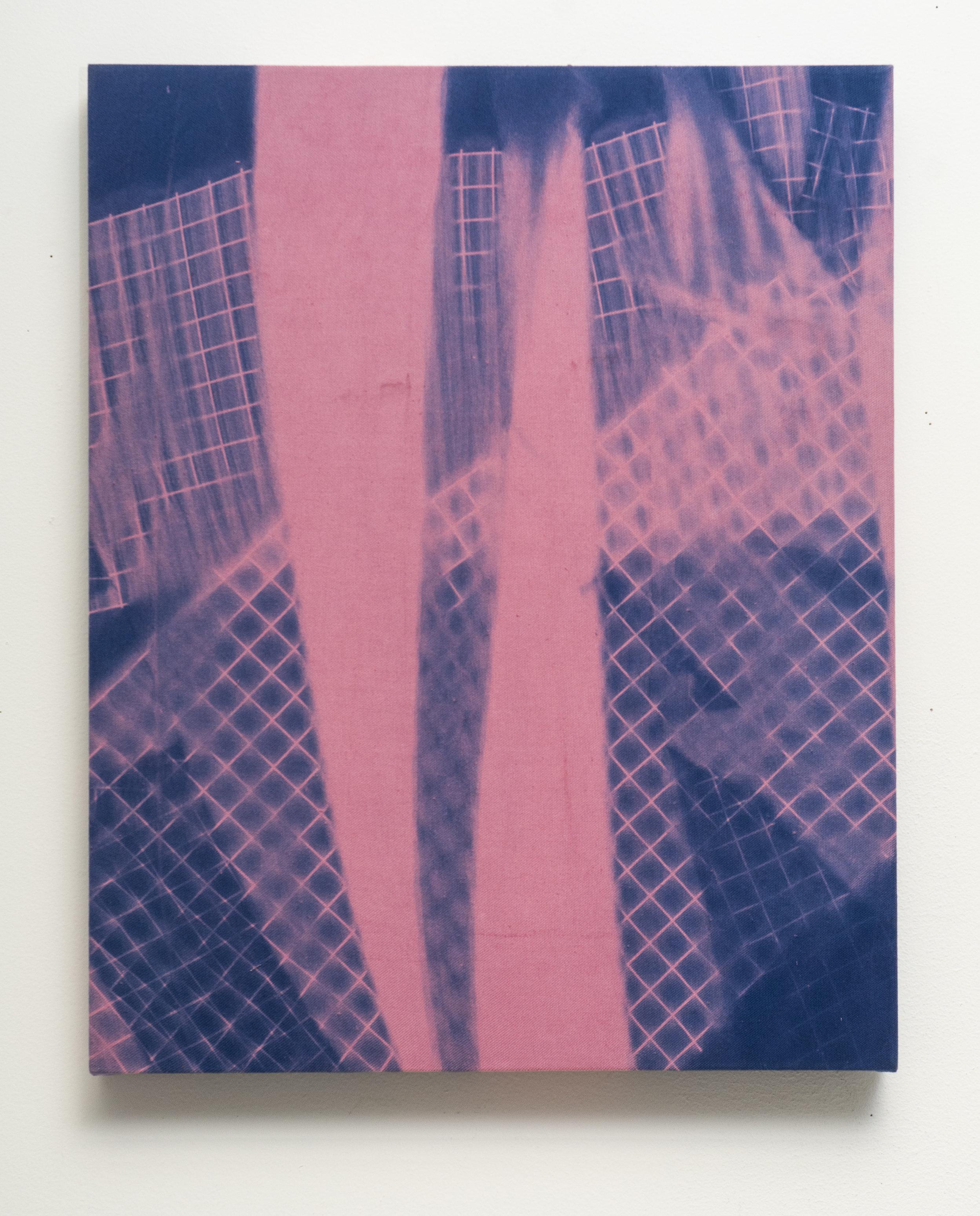 7Cyanotypes_White Fluorescent Light Diffuser, Triple Variant 1 (Pink)_16x20%22-.jpg