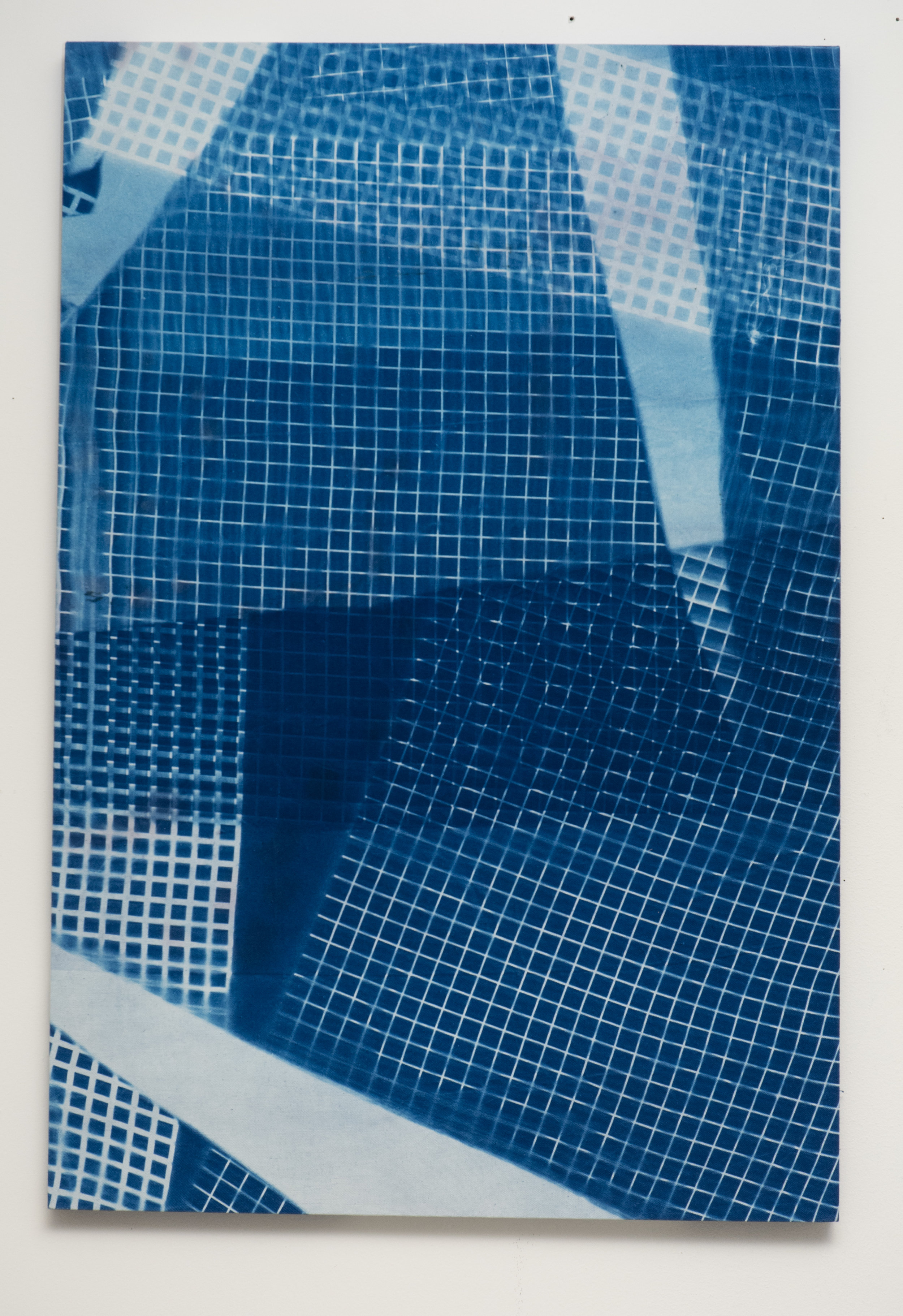 4Cyanotypes_White Fluorescent Light Diffuser Double Variant 3_224x36%22-.jpg