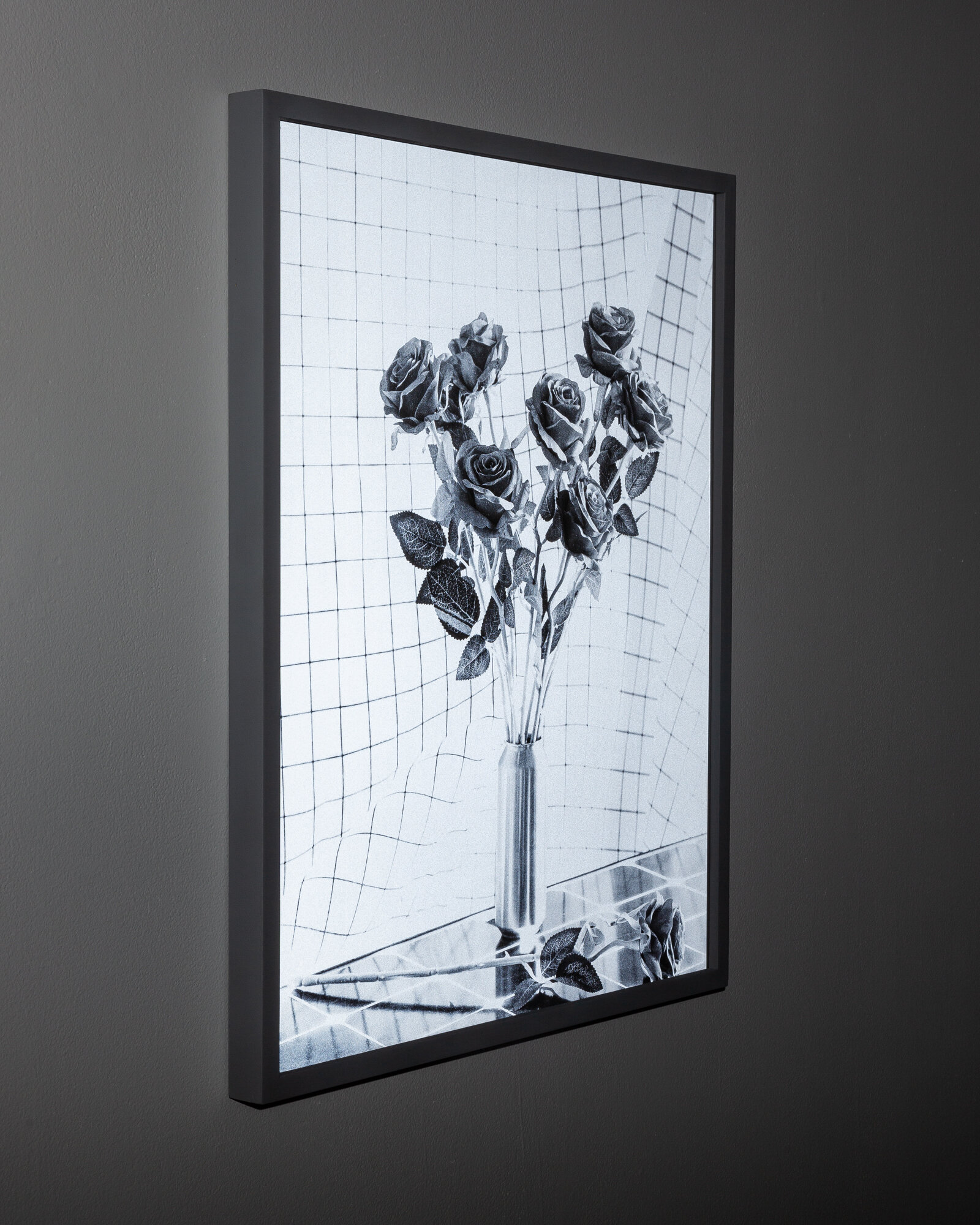 """""""Roses on Grid (Early Warning System)"""" (with flash)"""