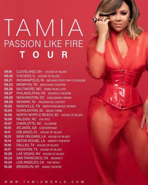 tamia-tour-620x775-thatgrapejuice-600x750.jpg