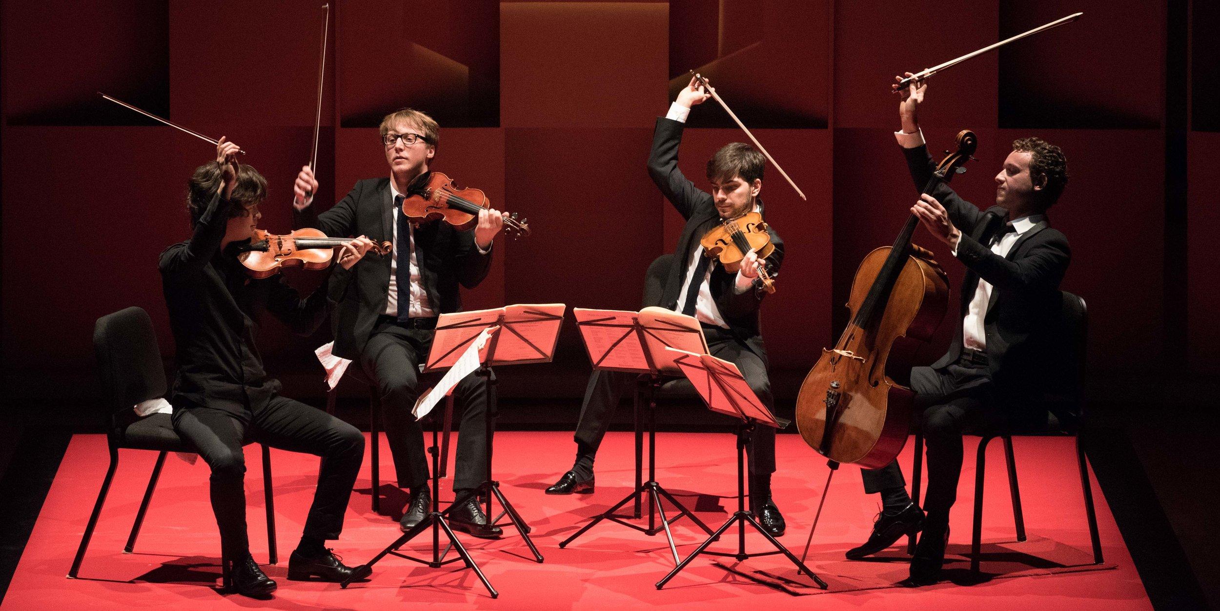 quatuorvankuijk2-radrienv.jpg