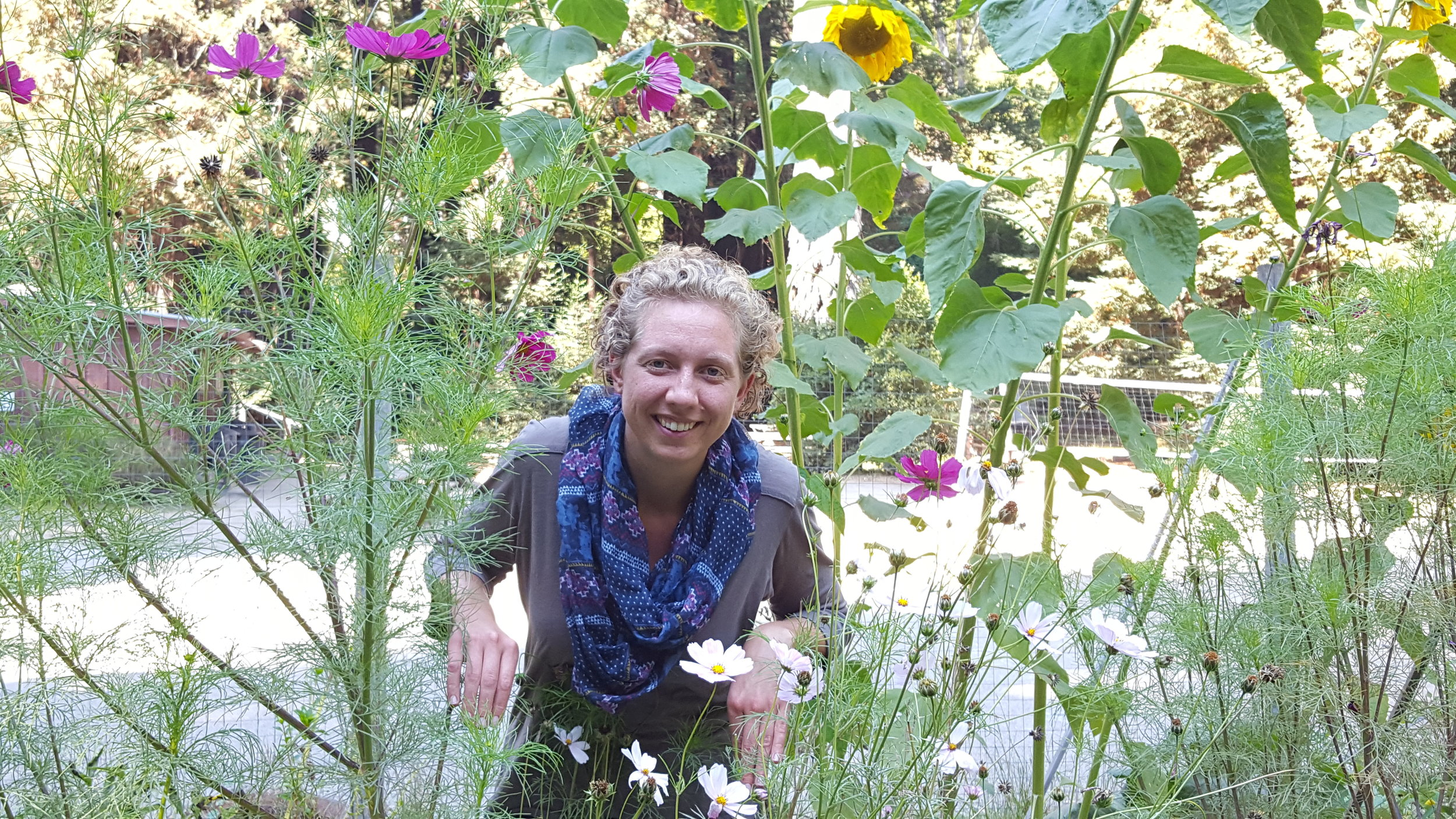Claire Roberts, Naturalist