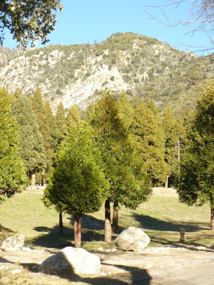 Pilgrim Pines Field_Southern California outdoor science school.jpg