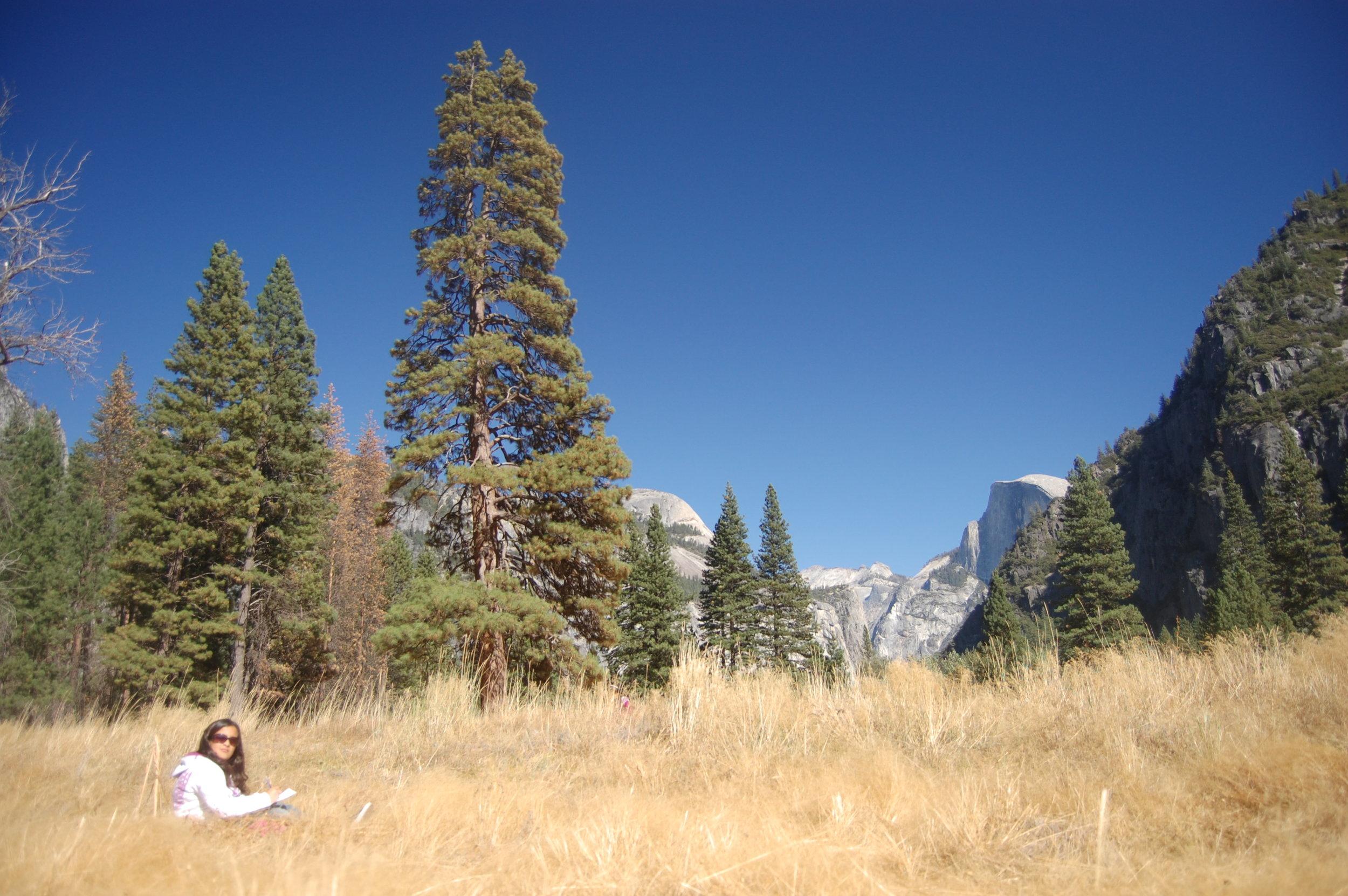WOLF School Outdoor Science School Field Trip to Yosemite, Half Dome.JPG