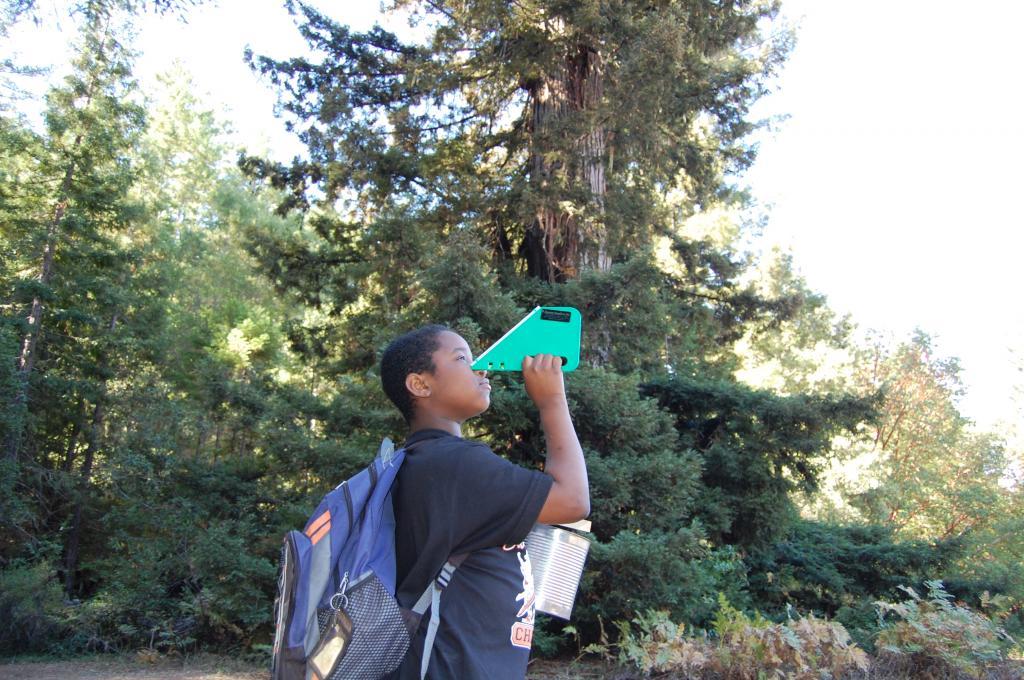 Redwood Study During WOLF School's California Outdoor Science School Program.JPG