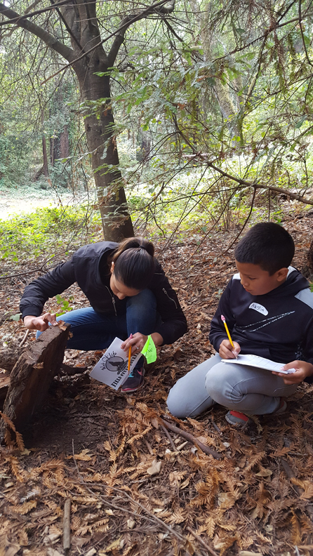 WOLF School Salamander Study at Camp Monte Toyon.jpg