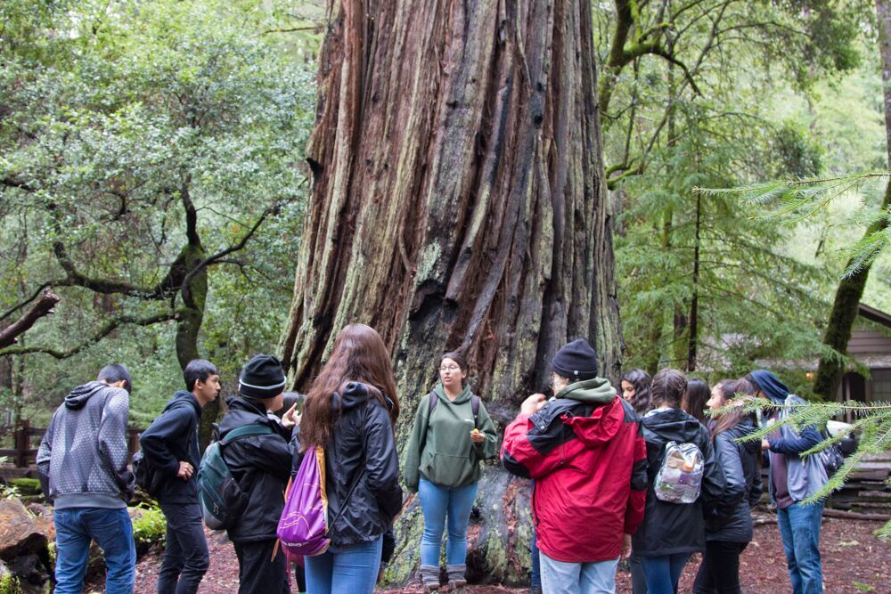 Andrew Hill High School at Big Basin with WOLF School_Photo Credit Sempervirens Fund.jpg