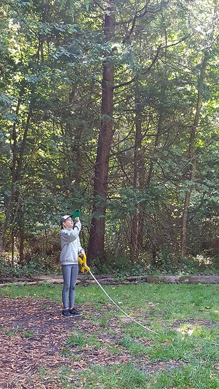 WOLF School Redwood Study at Camp Monte Toyon.jpg