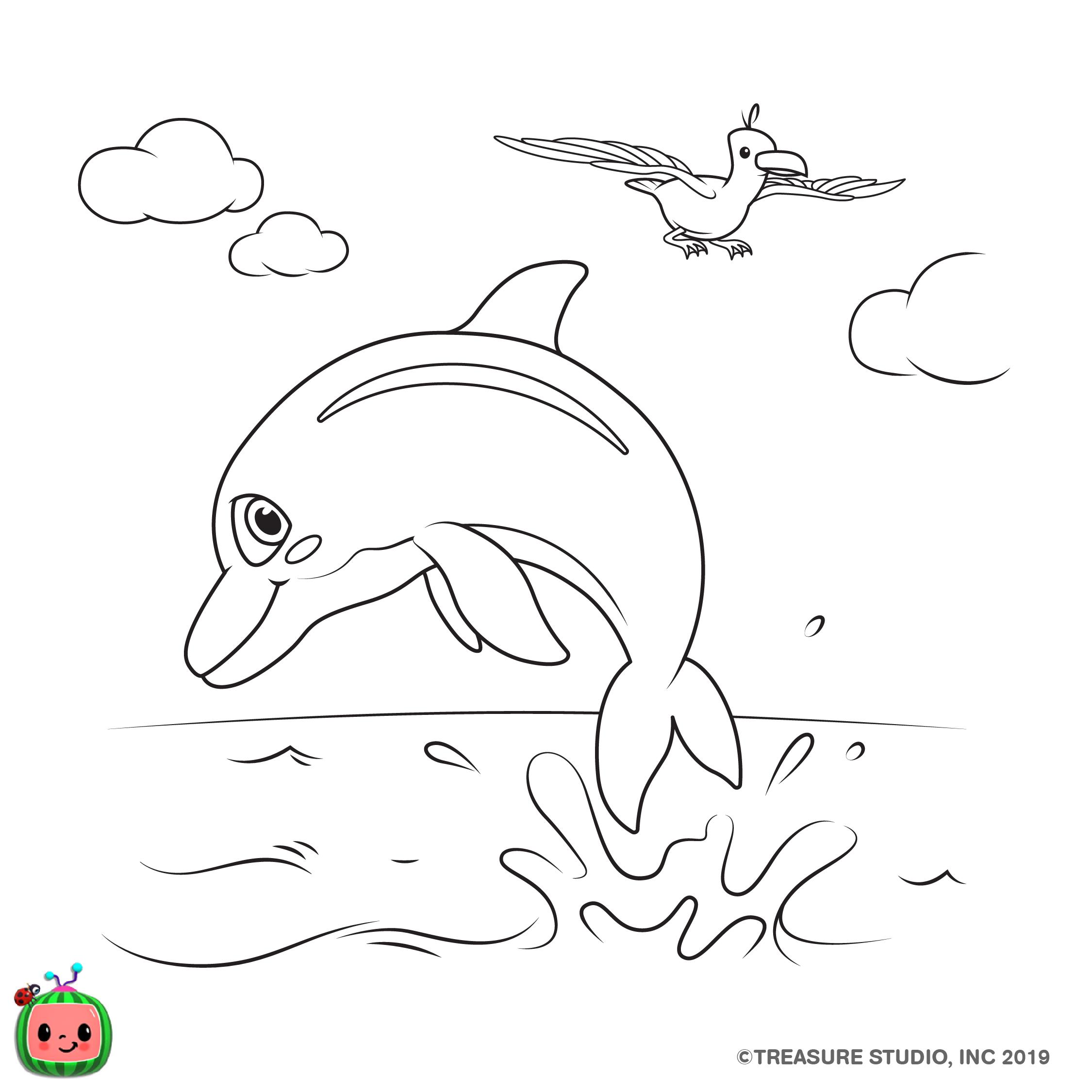 Sea Animal -