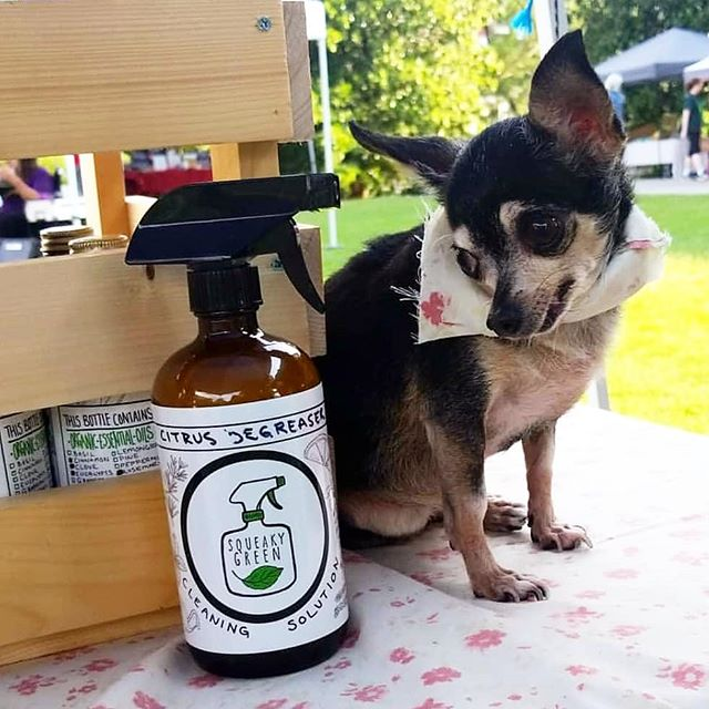 Come meet little LuLu and buy some of our homegrown/homemade cleaning products! Get $10 off a home cleaning with any purchase! We'll be at the East Atlanta Village farmers market tomorrow 4 to 8 pm. We'd love to see your lovely faces!!!! ♡