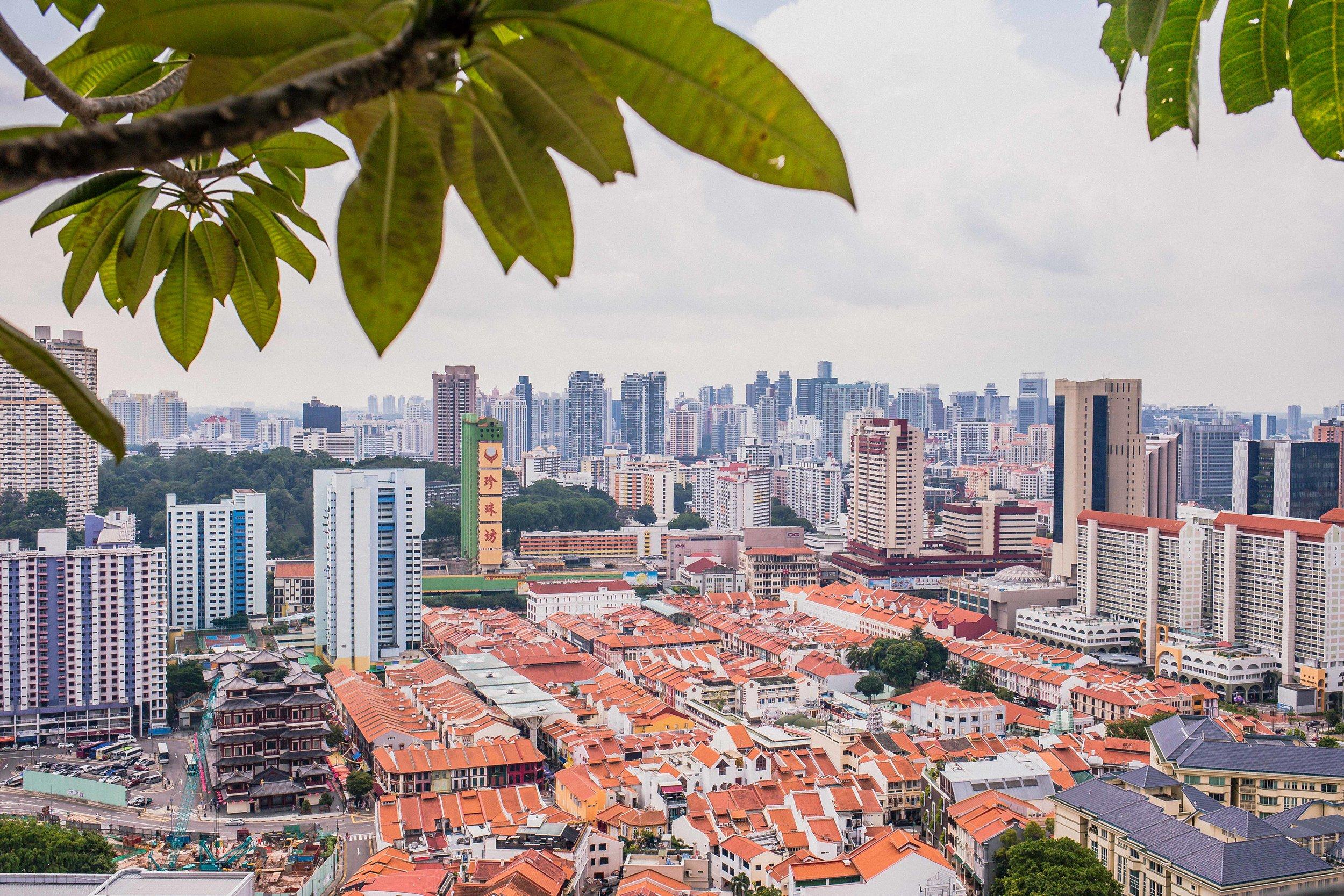 2017_04_28 Singapore-0297.jpg