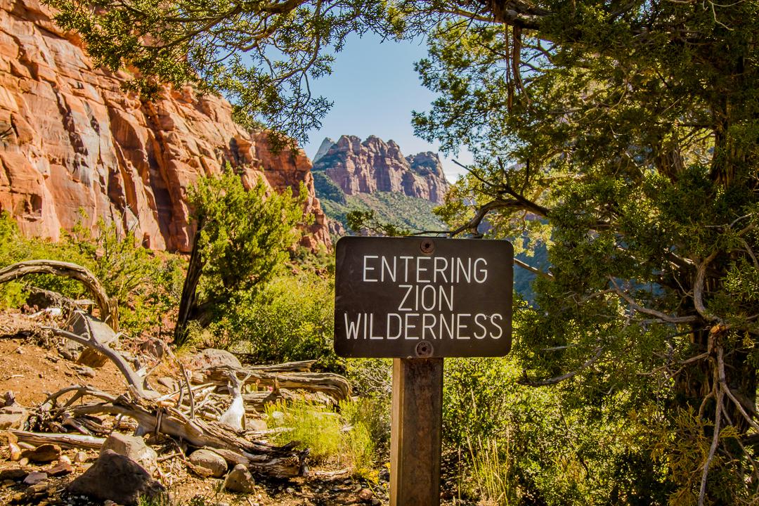 Zion-Wilderness-0488.jpg