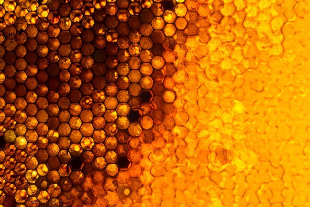 Honey and Flint Marketing Strategy.jpeg