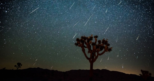 Joshua Tree National Park Perseids shower shared by JoshuaTreeVacationHomes.com