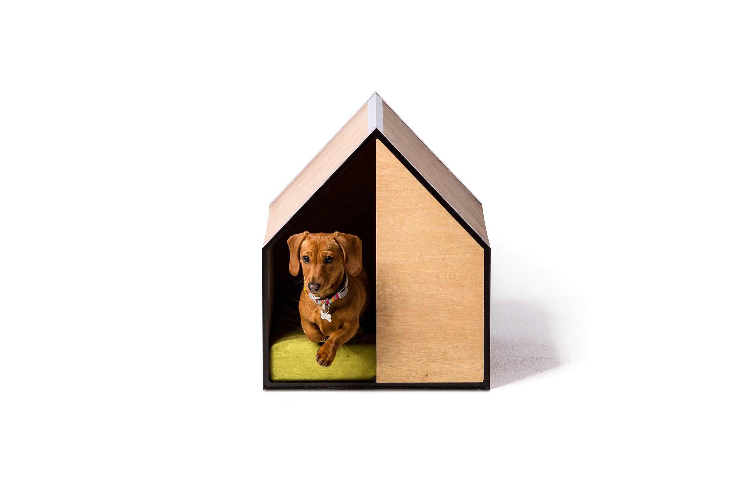 The Dog Room Small.jpg
