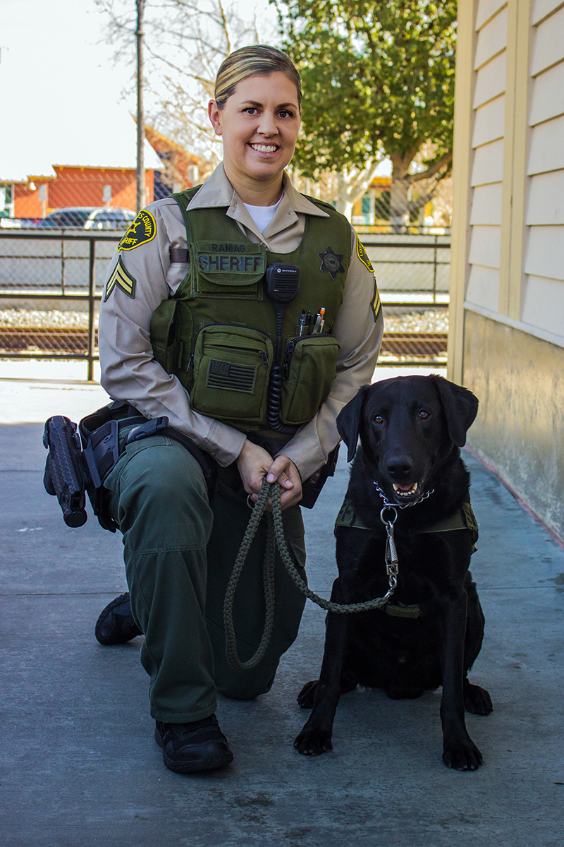 A-Day-In-The-Life-Of-LASD-Explosives-Detection-Dog-'Sstack'.jpg