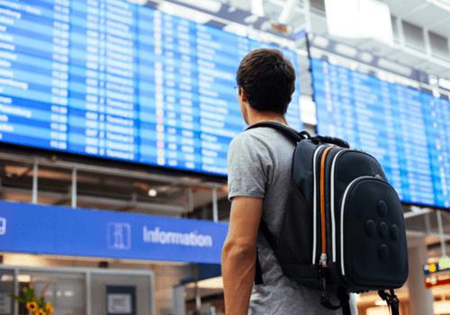 Passenger looking at the flight board