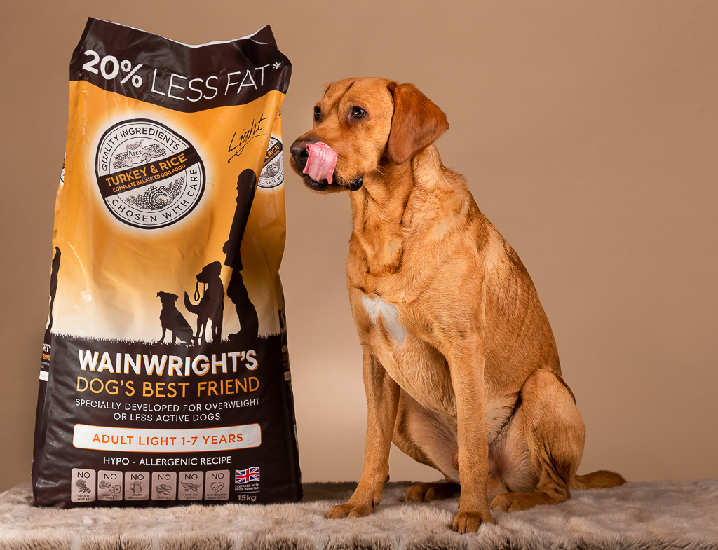 Leo the Labrador with his favourite food Wainwrights.