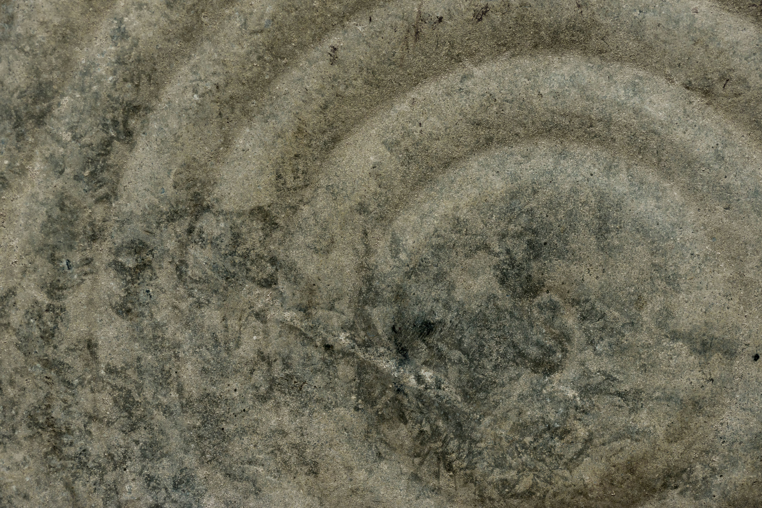 Bucket eye / Texture