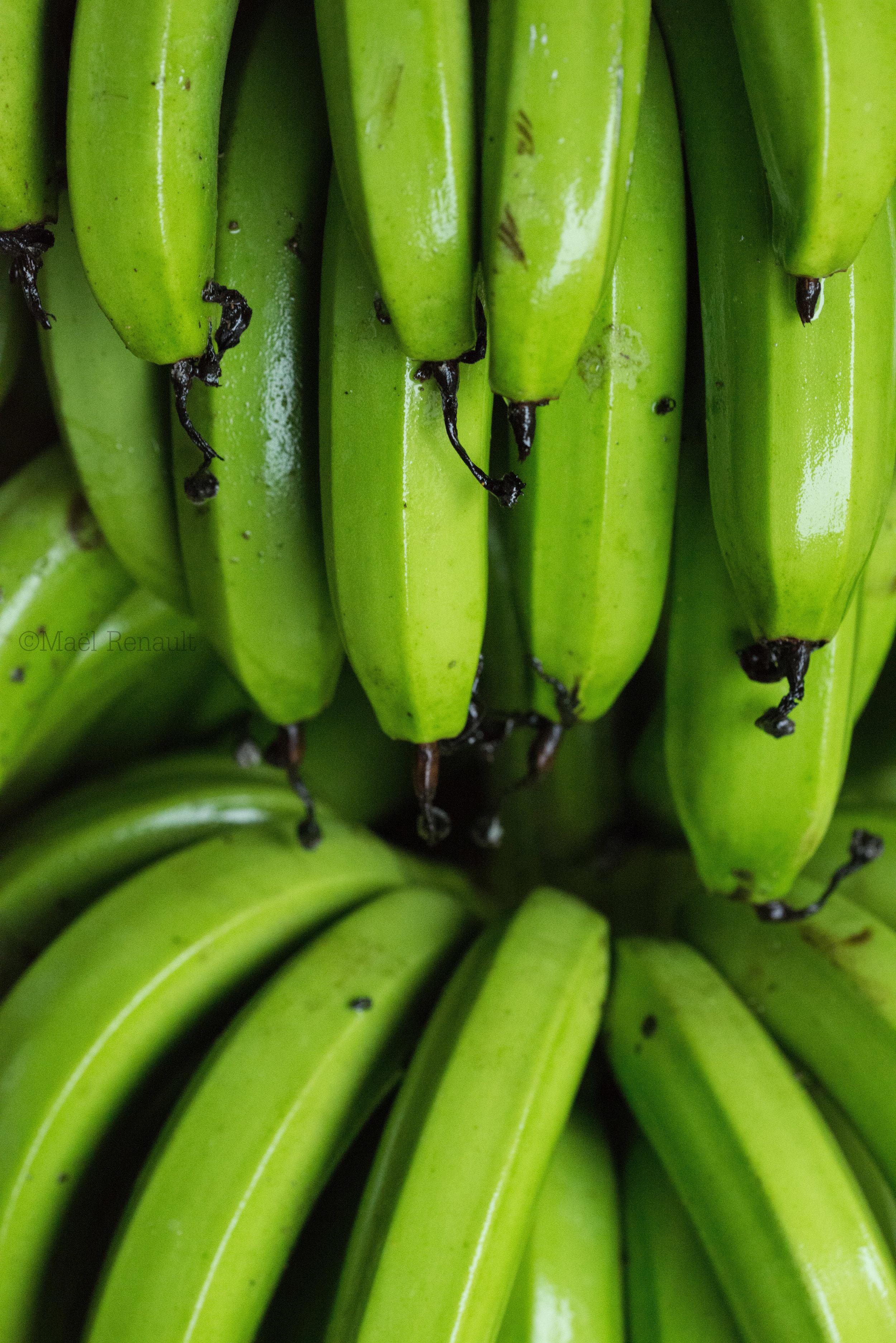 Fresh Banana / Food
