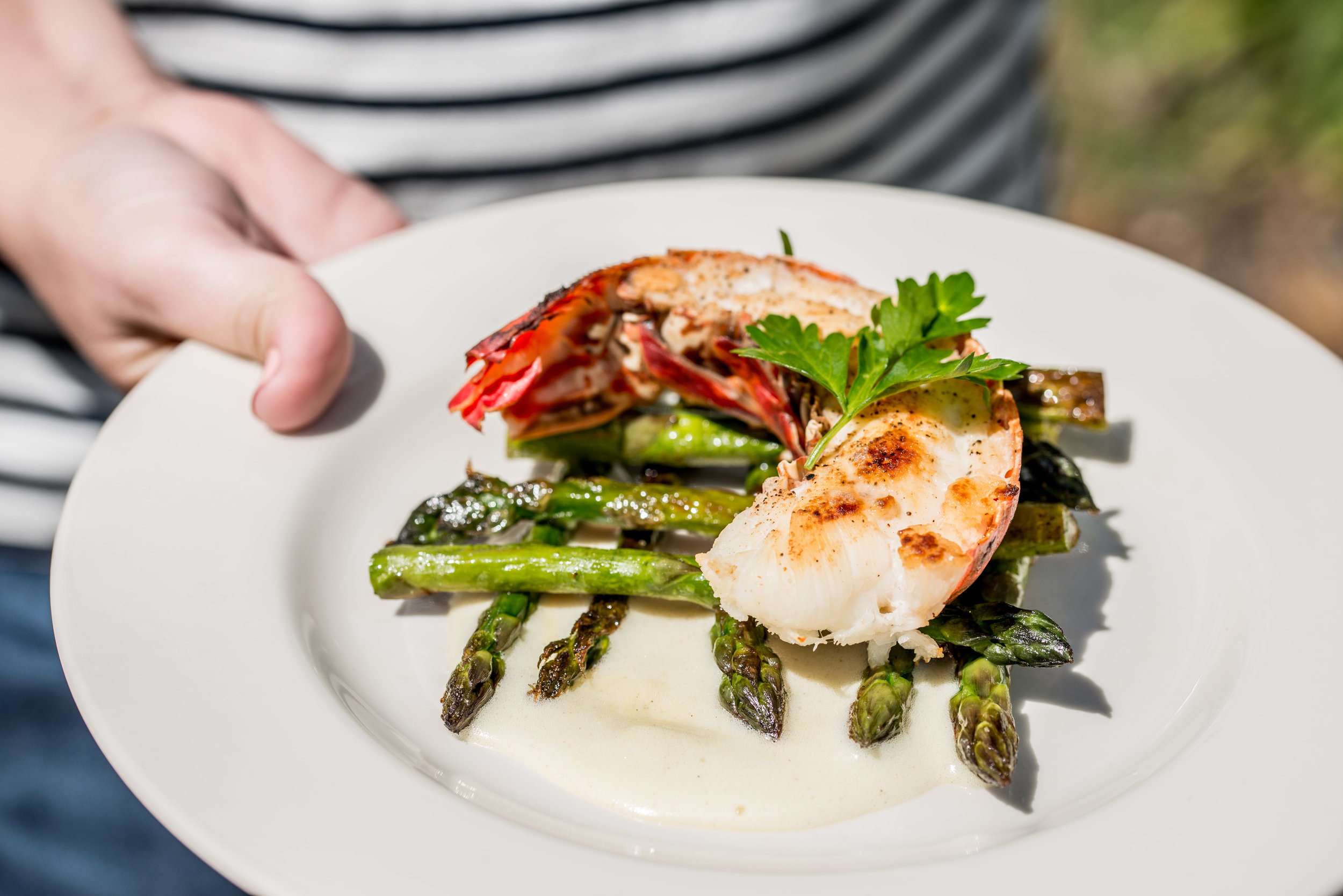 Lobster / Food