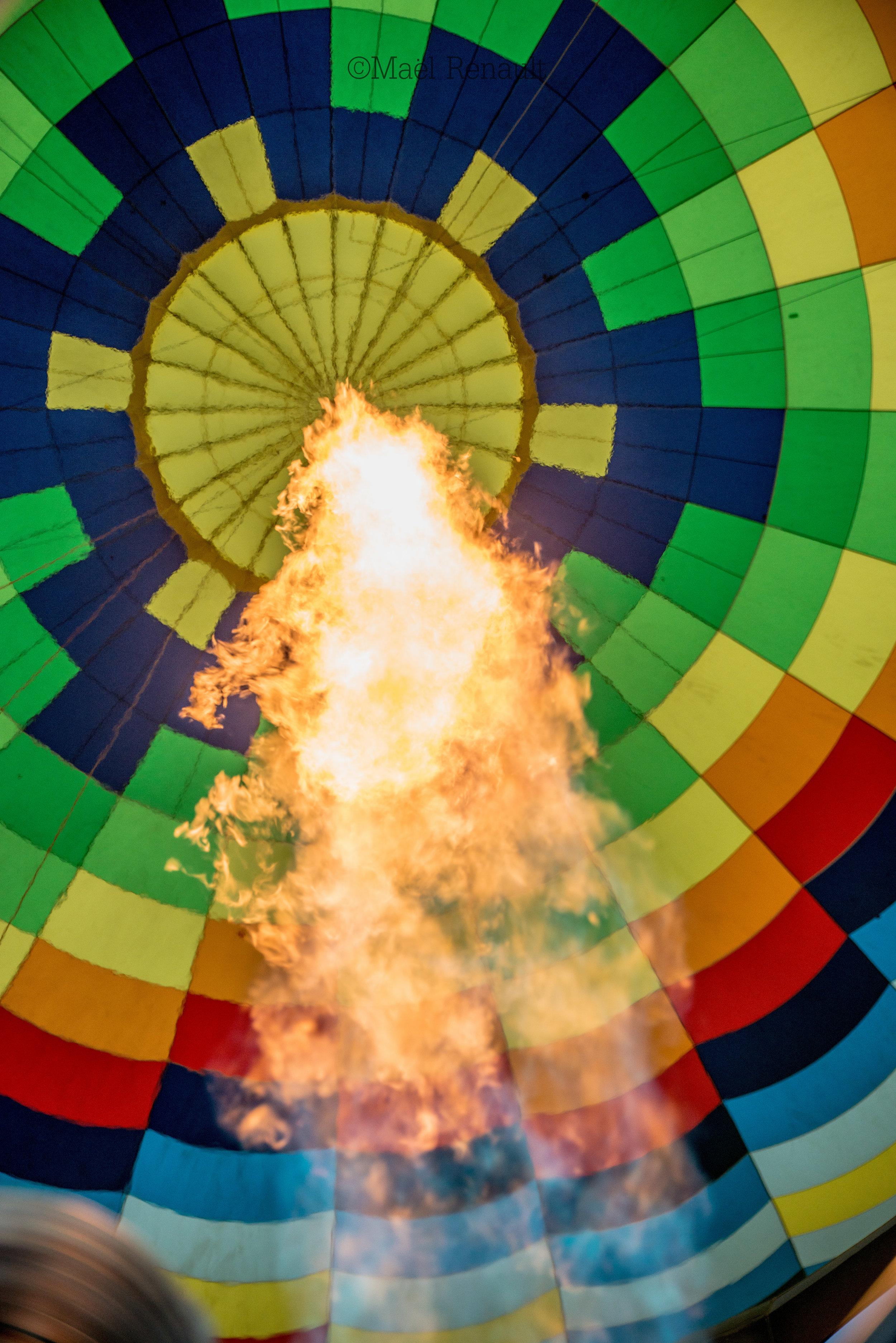 Hot air balloon / Napa Valley