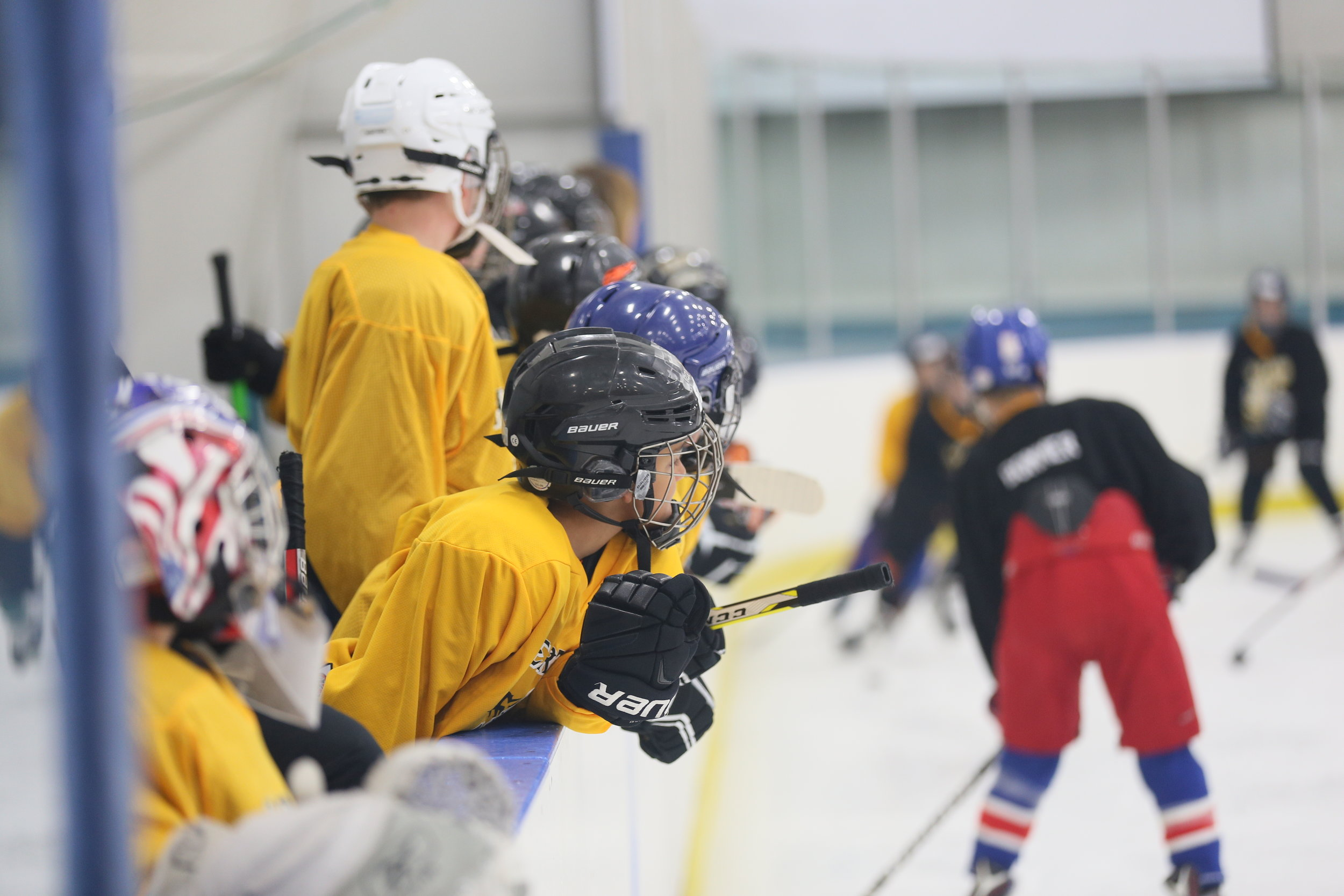Hockey Camps For Youth And Adults Heartland Hockey Camp