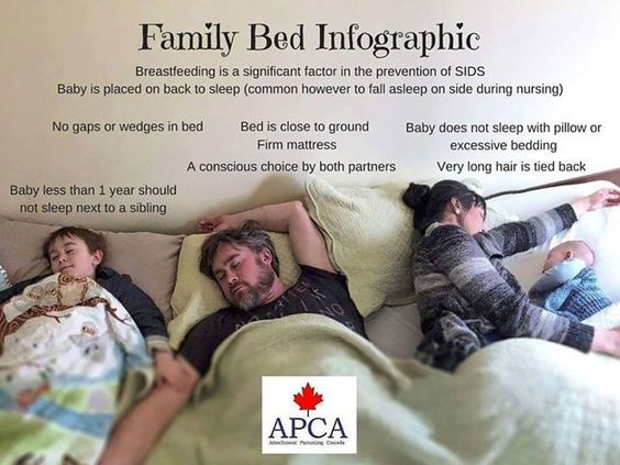 family bed infographic.jpg