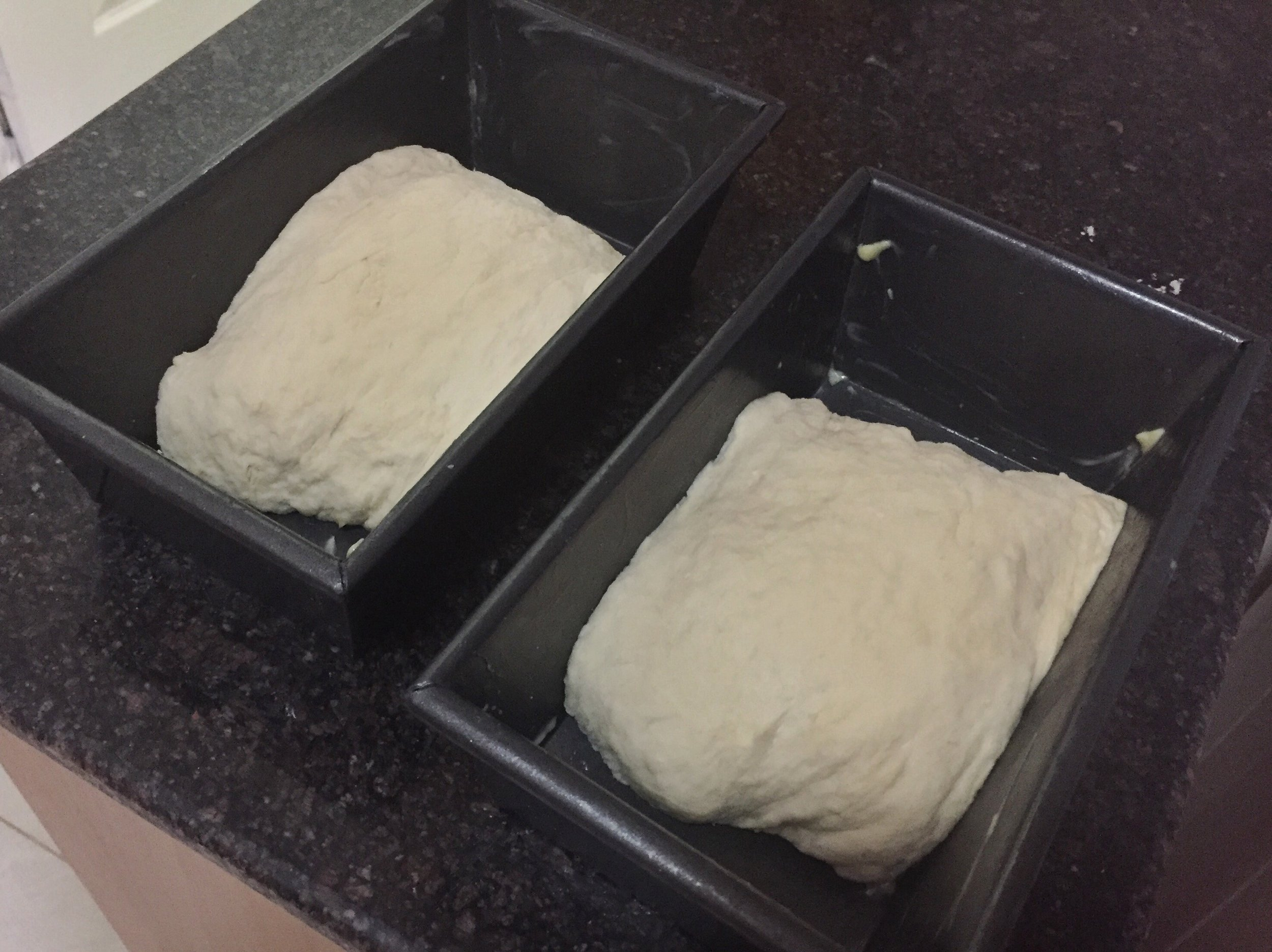 Dough before second rise