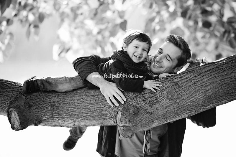 photo-papa-enfant-sur-un-arbre.jpg