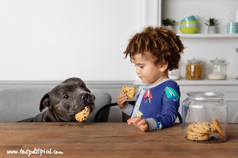 Enfant-et-son-chien-qui-partagent-des-biscuits.jpg